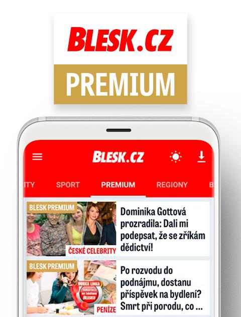 Půlroční Blesk premium